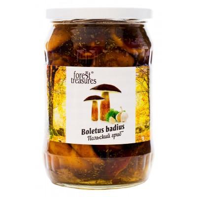 """Boletus badius """"Forest Treasures"""""""
